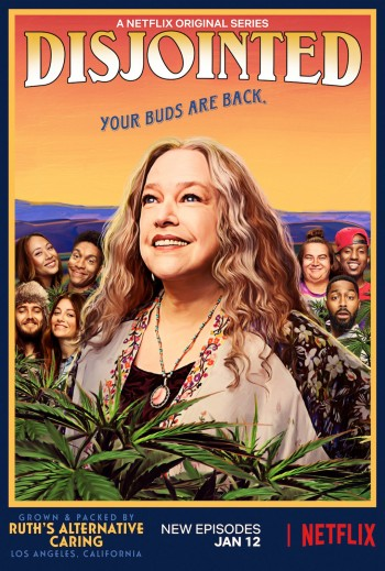 DISJOINTED - NETFLIX